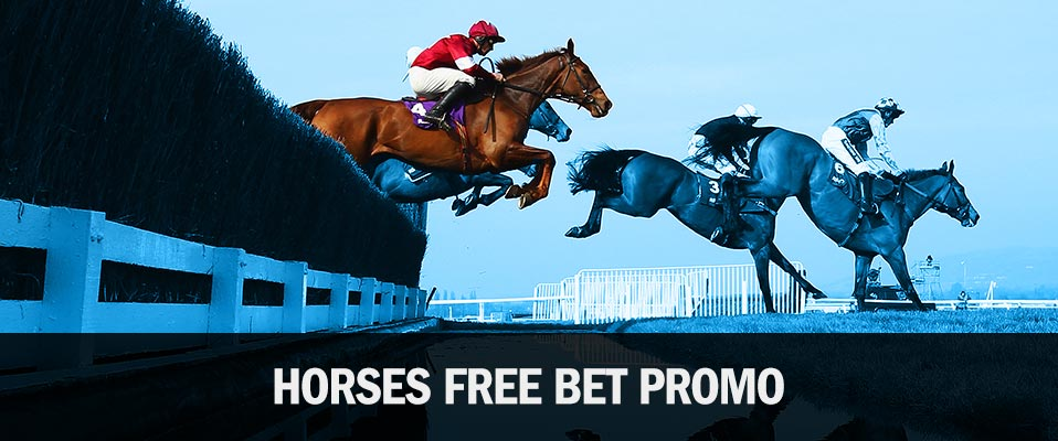 ​Get Free Bets on Horse Racing with winner.co.uk's Horses Loyalty Bonus