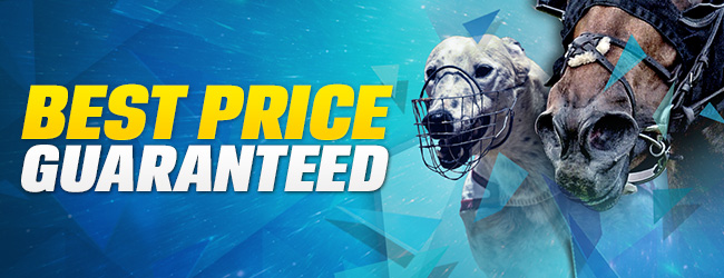 ​Coral Racing Best Price Guaranteed