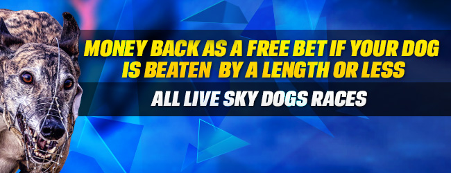 ​Amazing Dog Racing Offer: Enjoy the Coral Money Back if Beaten By Length