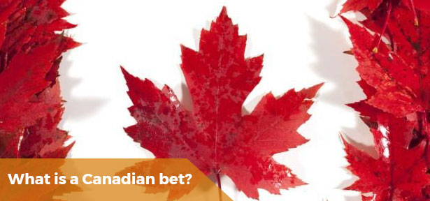 ​What Is A Canadian Bet?